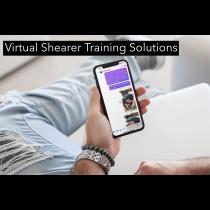 Virtual Shearer Training Solutions